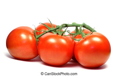 Tomatoes - Five red tomatoes on green graft isolated over...