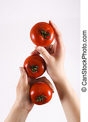 Tomatoes hands