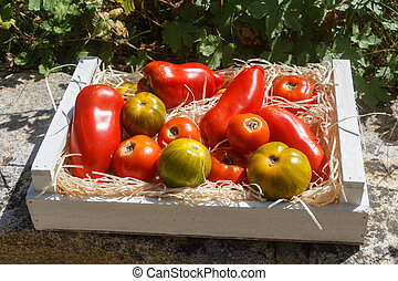 Tomatoes in a wooden crate