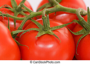 Tomatoes in close