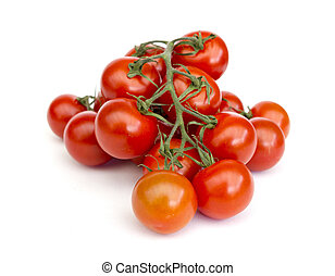 tomatoes in front of white background
