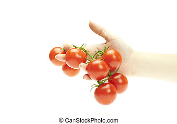 tomatoes in hand isolated on white