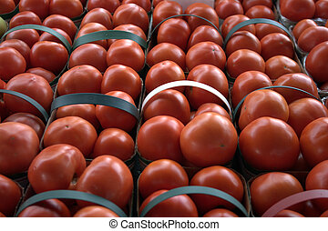 Baskets of luscious, red tomatoes on display in green handled baskets