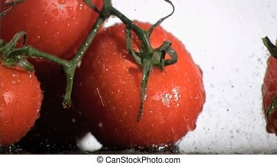 Tomatoes in super slow motion watering by droplets