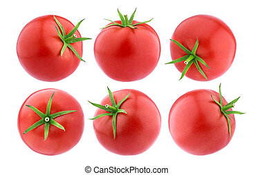Tomatoes isolated. Whole Tomatoes on white background, big collection