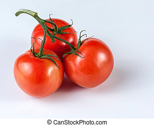 Tomatoes on a branch. Three ripe tomatoes on a branch.
