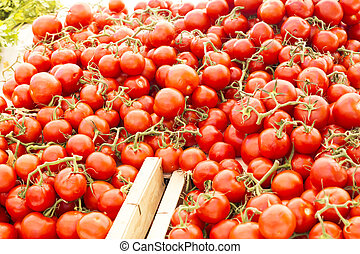 Tomatoes on a market in France