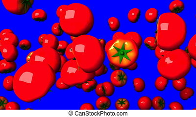 Tomatoes on blue chroma key. Loop able 3DCG render animation...