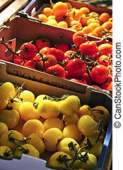 Tomatoes on the market - Colorful tomatoes for sale on ...