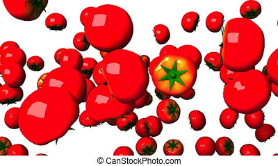 Tomatoes on white background. Loop able 3DCG render...