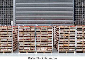Tomatoes Pallets