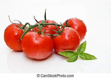 Tomatoes - Red tomatoes and basil