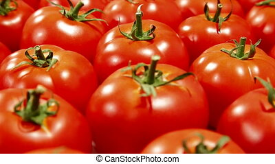 Tomatoes - Fresh Red Tomatoes Background