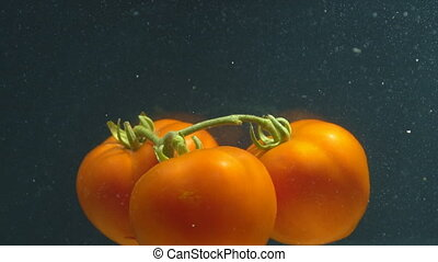 tomatoes under water close up