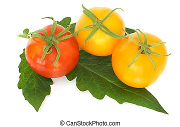 Tomatoes with leaf