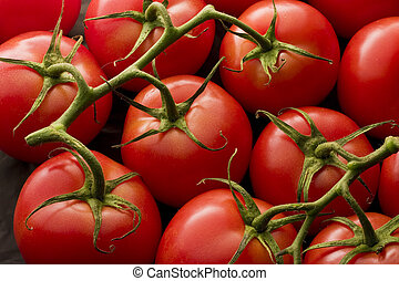 tomatos, 上に, つる