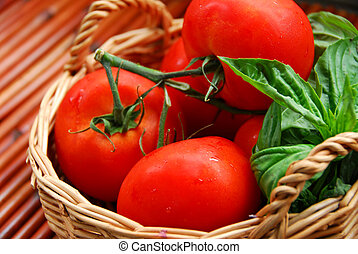 Tomatos and basil in a basket