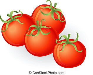 tomatos, ilustrace