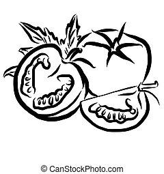 Tomatos Sketch Vegetables Outline Vector Artwork