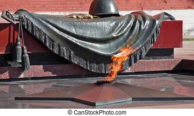 Tomb of the Unknown Soldier with burning flame in Alexander Garden