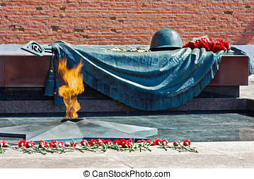 Tomb of the Unknown Soldier with eternal flame in Alexander...
