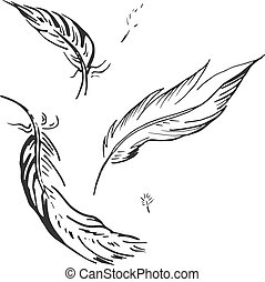 tomber, plume, illustration