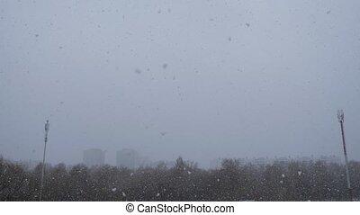 tomber, premier, neige, snowfall.