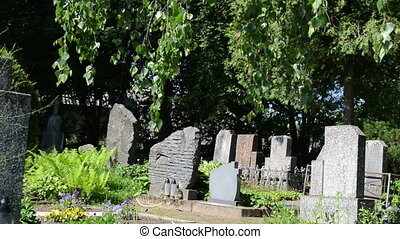 tombstone tree graveyard - Monuments gravestones and trees...