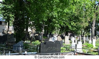 tombstone tree graveyard - Monuments gravestones and crosses...