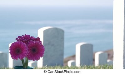 Tombstones of american memorial cemetery, military graveyard in USA. Headstone or gravestone, flowers, ocean and green grass. Respect and honor for armed forces soldiers. Veterans and Remembrance Day.