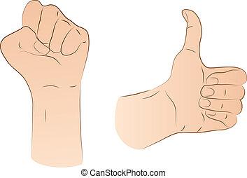 tommelfinger, næve, oppe