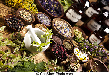 tonalité, coloré, bouteilles, herbes, médecine, naturel