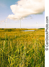 toned long grass and bogland with wind turbines