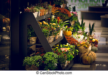 Toned shot of wooden stand with flowers at florist shop
