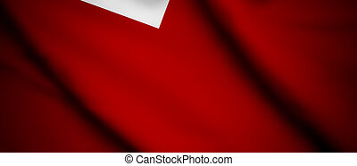 Tonga - High detailed waving flag of different countries ...