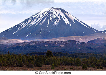 Tongariro National Park - Mount Ngauruhoe - NATIONAL PARK,...