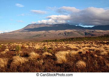 tongariro parco nazionale, paesaggio