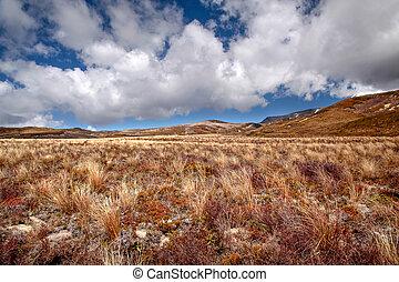 tongariro parco nazionale, smilzo, paesaggio