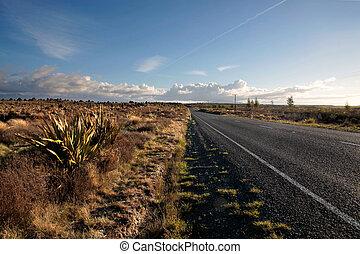 tongariro parco nazionale, strada