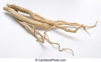 tongkat, ali, -, nature's, sexuell, stimulant.