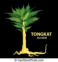 tongkat-ali - Tongkat Ali - nature\'s sexual stimulant