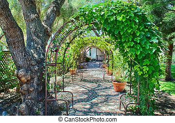 tonnelle, aérien, jardin