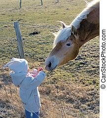 Too cute! - Child feeding horse
