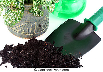gardening - tools for gardening, plant, and dirt