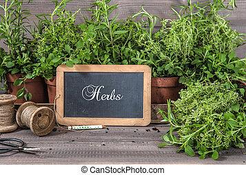 tools., ingredienten, voedingsmiddelen, ouderwetse , keukenkruiden, chalkboard, fris