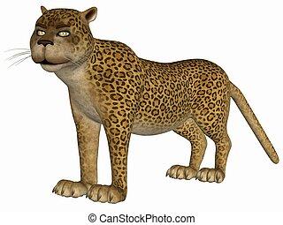 toon, λεοπάρδαλη