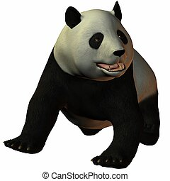 toon, 熊貓