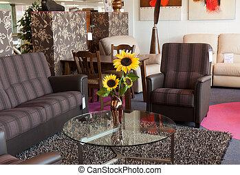 toonzaal, modern meubilair, detailhandel