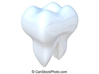 Tooth 3D render