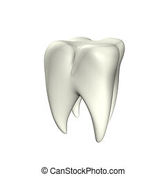 Tooth 3D - 3d illustration looks clean tooth at the white...